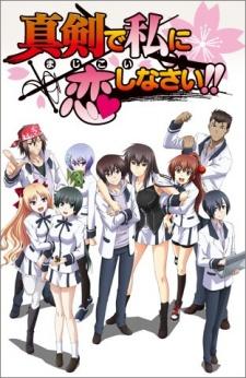 Majikoi: Oh! Samurai Girls